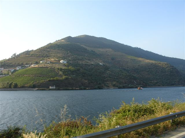 Pelas margens do Douro...